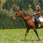 horseriding7