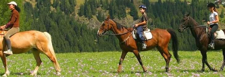 Settimane equestri per bambini, ragazzi e adulti