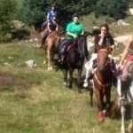 horseriding6
