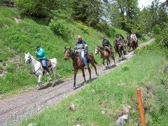 horseriding4