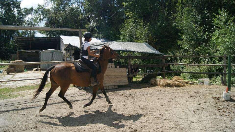 ranch payarin